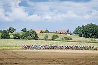 peloton<br /> <br /> Grote Prijs Marcel Kint 2021<br /> One day race from Zwevegem to Kortrijk (196km)<br /> <br /> ©kramon