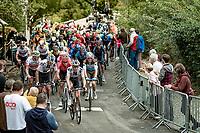 peloton up the infamous Mur de Huy<br /> <br /> 84th La Flèche Wallonne 2020 (1.UWT)<br /> 1 day race from Herve to Mur de Huy (202km/BEL)<br /> <br /> ©kramon