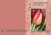Alfredo, FLOWERS, paintings, BRTOCH40520CP,#F# Blumen, flores, illustrations, pinturas