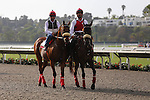 July 26, 2014: 2012 Bing Crosby winner Amazonbie leads the post parade for the 2014 running of the Bing Crosby at Del Mar Thoroughbred Club in Del Mar, California. Zoe Metz/ESW/CSM