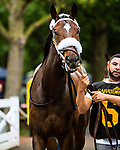SEPT 05, 2021: SAUCY LADY T post parade in the Gr.1 Spinaway Stakes, for 2-year old fillies, going 7 furlongs, at Saratoga Racecourse, Saratoga Springs, New York. Sue Kawczynski/Eclipse Sportswire/CSM