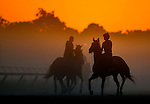 SARATOGA SPRINGS, NY - AUGUST 27: Horses exercise on the Oklahoma Training Track at sunrise on Travers Stakes Day at Saratoga Race Course on August 27, 2016 in Saratoga Springs, New York. (Photo by Scott Serio/Eclipse Sportswire/Getty Images)