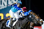 DUBAI, UNITED ARAB EMIRATES - MARCH 25: Vivlos #9 ridden by Joao Moreira (blue hat), celebrates after winning the Dubai Turf at Meydan Racecourse during Dubai World Cup Day on March 25, 2017 in Dubai, United Arab Emirates. (Photo by Douglas DeFelice/Eclipse Sportswire/Getty Images)