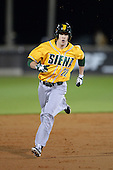 Siena Saints outfielder Dan Swain (22) runs the bases after hitting a home run during the season opening game against the Central Florida Knights at Jay Bergman Field on February 14, 2014 in Orlando, Florida.  UCF defeated Siena 8-1.  (Copyright Mike Janes Photography)