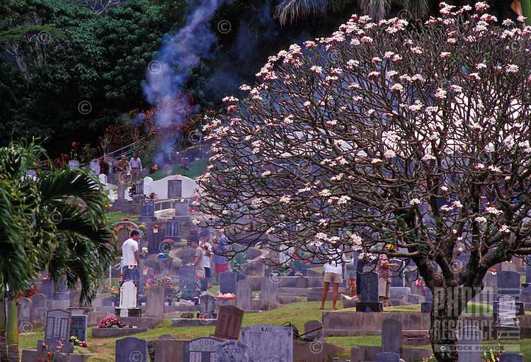 Families gathered around tombstones for Ching Ming, an annual Chinese ceremony honoring the ancestors, Manoa Chinese Cemetery, Manoa Valley, Honolulu. A plumeria tree blooms in the foreground.