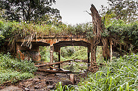 An abandoned, overgrown bridge over a river bed near Schofield Barracks Army Base, Wahiawa district, O'ahu.