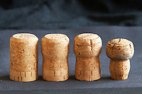 champagne corks showing the evolution of shape with time