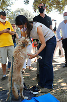 The mayor of Rome Virginia Raggi strokes her dog during a picnic at Caffarella park, in occasion of the election campaign for the new mayor of the city.<br /> Rome (Italy), September 12th 2021<br /> <br /> Photo Samantha Zucchi Insidefoto