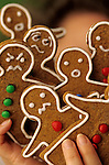 Holidays with Ginger Bread Cookies
