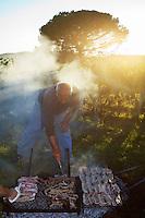 Europe/France/Aquitaine/33/Gironde/ Sainte-Colombe: Préparation du Repas des vendangeurs ,Grillades dans la vigne chez Phillipe Carille ,viticulteur Cotes de Castillon AOC- Poupille et Chateau Poupille ,le père de Phillipe Carille , Jean-Marie est au commandes du barbecue