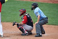 World Team catcher Gary Sanchez (35) and umpire Ron Teague await the pitch during the MLB All-Star Futures Game on July 12, 2015 at Great American Ball Park in Cincinnati, Ohio.  (Mike Janes/Four Seam Images)
