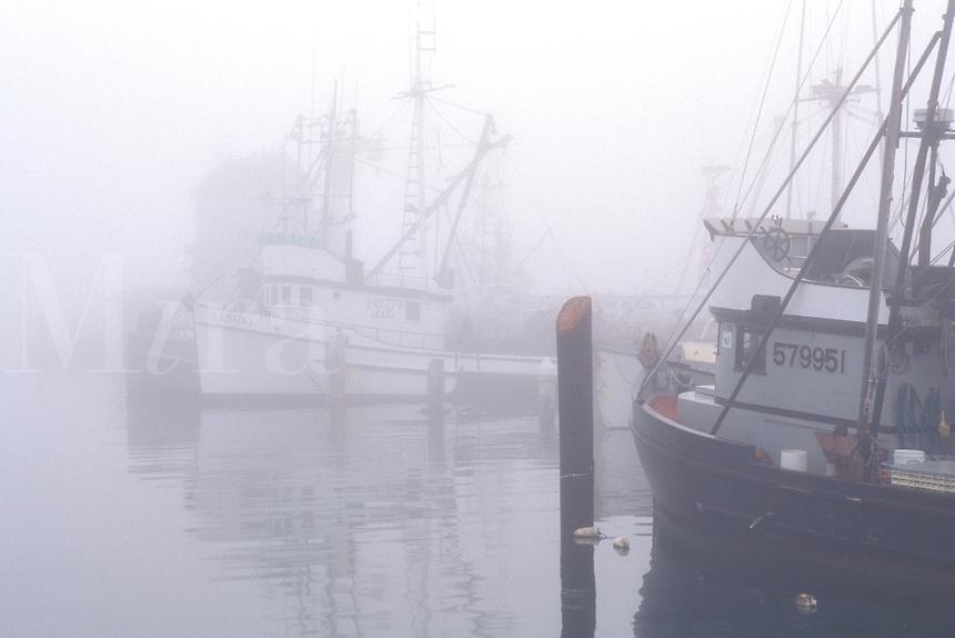 Commercial marine fishing boats docked in harbor in morning coastal mist fog, Santa Barbara, California Coast.