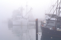 Commercial marine fishing boats docked in harbor in morning coastal mist fog, Santa Barbara, California Coast.