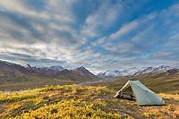 Camp while backbacking along the Teklanika river in Denali National Park, Interior, Alaska