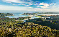 Whanganui Inlet on west coast with native forest, Nelson Region, West Coast, South Island, New Zealand