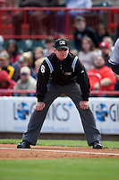 Umpire Ryan Wills during a game between the Richmond Flying Squirrels and Erie Seawolves on May 20, 2015 at Jerry Uht Park in Erie, Pennsylvania.  Erie defeated Richmond 5-2.  (Mike Janes/Four Seam Images)