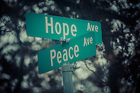 Hope and Peace Together