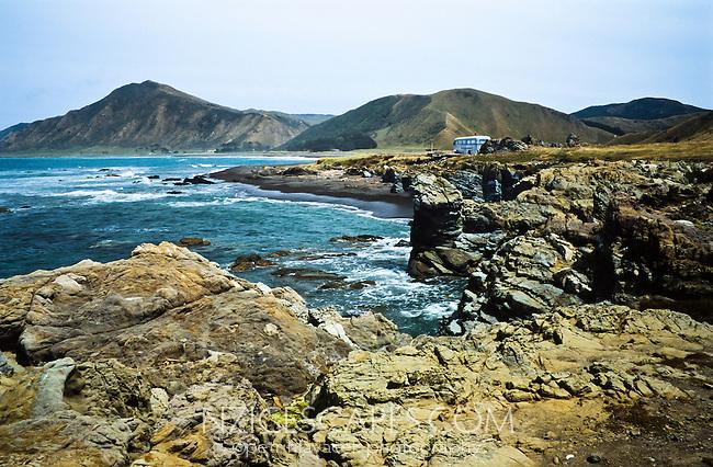 Tora - East Coast of Martinborough - Wellington Region, New Zealand