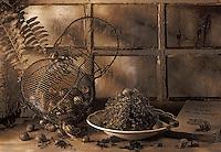 Gastronomie générale / Cuisine générale : Escargots de Bougogne dans la cabane du jardinier
