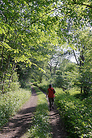 im Gauja-Nationalpark, Lettland, Europa