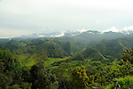 The mountains in the rural, coffee-growing region of Colombia.