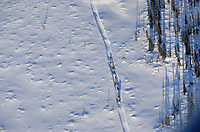 Aerial of Jim Gallea on Trail to Cripple Chkpt