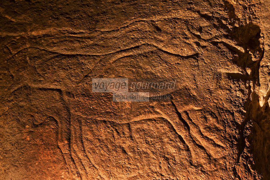 Europe/France/Aquitaine/64/Pyrénées-Atlantiques/Pays-Basque: Grottes d'Isturitz et d'Oxocelhaya _Gravure pariétale [Non destiné à un usage publicitaire - Not intended for an advertising use]