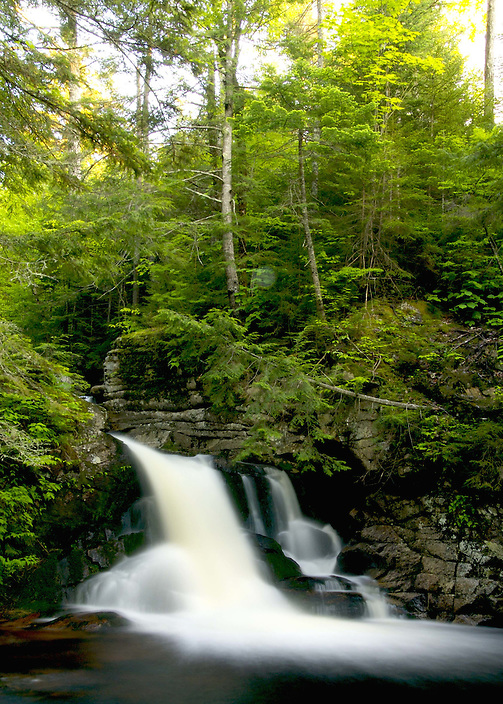 One of several drops along Cascade Brook,  reached by the Cascades Trail in Waterville Valley, New Hampshire.