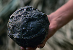 Olmec; El Manati; rubber ball; 3000 years old; Mexico