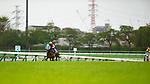 FUNABASHI,JAPAN-APRIL 14: Oju Chosan #6,ridden byShinichi Ishigami ,wins the Nakayama Grand Jump at Nakayama Racecourse on April 14,2018 in Funabashi,Chiba,Japan (Photo by Kaz Ishida/Eclipse Sportswire/Getty Images)