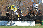 07 November 2009: Liverpool Gloves, Country Cousin (1st), Ballet Boy (2nd),  Otappaz in the Constitution Hurdle at Montpelier Hunt Races in Orange, Va. Country Cousin is owned by Oakwood Stable and trained by Julie Gomena.