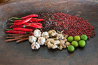 Bali, Indonesia.  Balinese Spices:  Garlic, Ginger, Chilis, Cinnamon, Limes, Star Anise, plus Saga Tree (Red Bead Tree) Seeds  for Decoration.