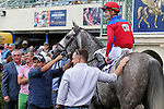 HALLANDALE BEACH, FL - FEBRUARY 06:     Power Alert #10 with Julien Leparoux on board, in the winners' circle for  the Gulfstream ParkTurf Sprint Stakes Black Type  on Donn Handicap Day at Gulfstream Park on February 06, 2016 in Hallandale Beach, Florida. (Photo by Liz Lamont)