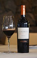 Bottle and glass of Saurus Patagonia Select Malbec Bodega Familia Schroeder Winery, also called Saurus, Neuquen, Patagonia, Argentina, South America