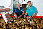 Adrian and Noel Clifford of Cliffords Ardfert potato farmsorting the potatoes as they are been harvested