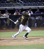 Justin Farmer - 2021 Arizona League Padres (Bill Mitchell)