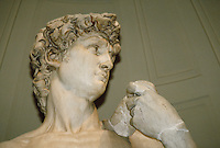 Detail of David's head. Michelangelo. Florence Tuscany Italy Europe.