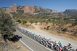 The peloton passing near Mallos de Riglos during the stage of La Vuelta 2012 between Tarazona and Jaca.August 23,2012. (ALTERPHOTOS/Paola Otero)