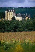 Europe/France/Aquitaine/24/Dordogne/Vallée de la Dordogne/Périgord/Périgord Noir: Le Château de Fayrac