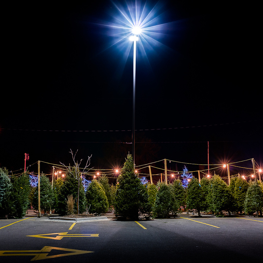 """Michael Knapstein's image """"Star Light, Star Bright"""" was used by Photolucida (Portland, Oregon) for their 2017 holiday email message."""