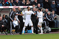 Saturday 2nd March 2013<br /> Pictured: (L-R) Luke Moore, Leon Britton.<br /> Re: Barclays Premier Leaguel, Swansea  v Newcastle at the Liberty Stadium in Swansea.