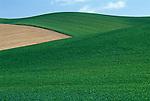 Portfolio Agriculture