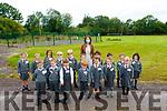 Dromclough NS Juniors: Mrs. Browne's Junior class at Dromclough NS, Listowel.