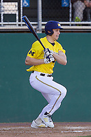 Michigan Wolverines outfielder Zach Zott (48) follows through on his swing during the NCAA season opening baseball game against the Texas State Bobcats on February 14, 2014 at Bobcat Ballpark in San Marcos, Texas. Texas State defeated Michigan 8-7 in 10 innings. (Andrew Woolley/Four Seam Images)