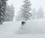 Back country, snowcat powder skiing at Grand Targhee, Wyoming