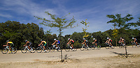 27 MAY 2012 - MADRID, ESP - Competitors race across the top of the hill during the elite men's 2012 World Triathlon Series round at Casa de Campo in Madrid, Spain (PHOTO (C) 2012 NIGEL FARROW)