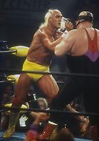 Hulk Hogan vs. Vador, 1995, Photo By John Barrett/PHOTOlink
