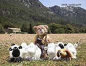 Xavier, CUTE ANIMALS, teddies, photos, SPCHTEDDIES77,#ac#