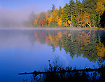 Vilas County, WI<br /> Clearing fog, autumn forest reflecting on Little Bass Lake