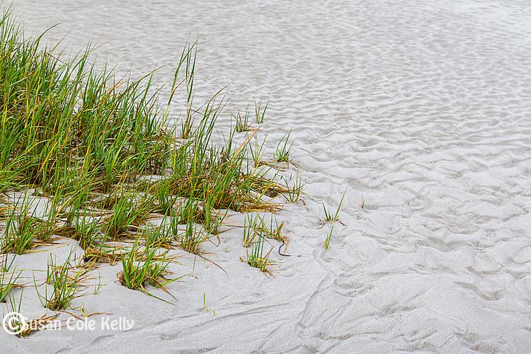 Skaket Beach in Orleans, Cape Cod, Massachusetts, USA